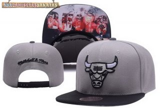 Gorros 2017 Chicago Bulls Gris NO.05
